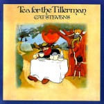 Tea for the Tillerman - Cat Stevens - 30.33