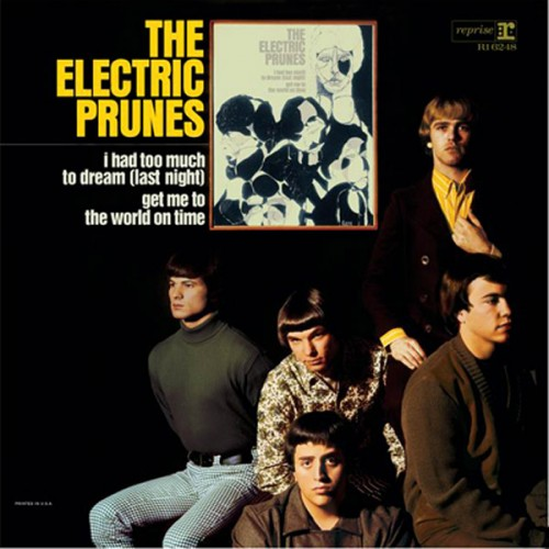 The Electric Prunes - The Electric Prunes - 28.69